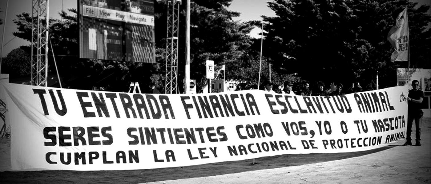 Photo of Cada vez más odio hacia (In)Mundo Marino