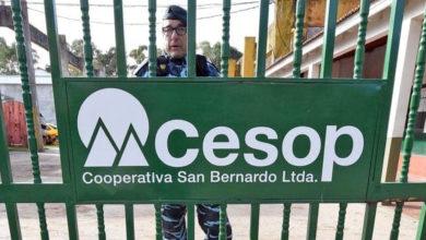 Photo of Al servicio de la sospecha