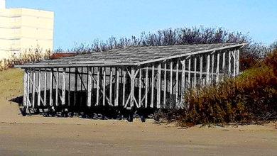 Photo of ¿Por qué seguimos construyendo sobre la playa?