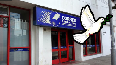 Photo of A buscar una paloma mensajera