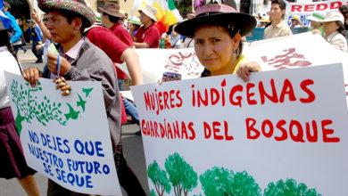 Photo of Las mujeres y el ambiente
