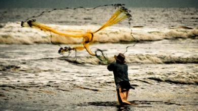 Photo of A la pesca laboral