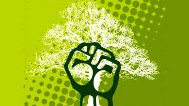 Photo of El ambientalismo es de todos