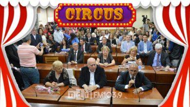HCD Circus