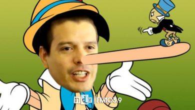 Cardozo Pinocho